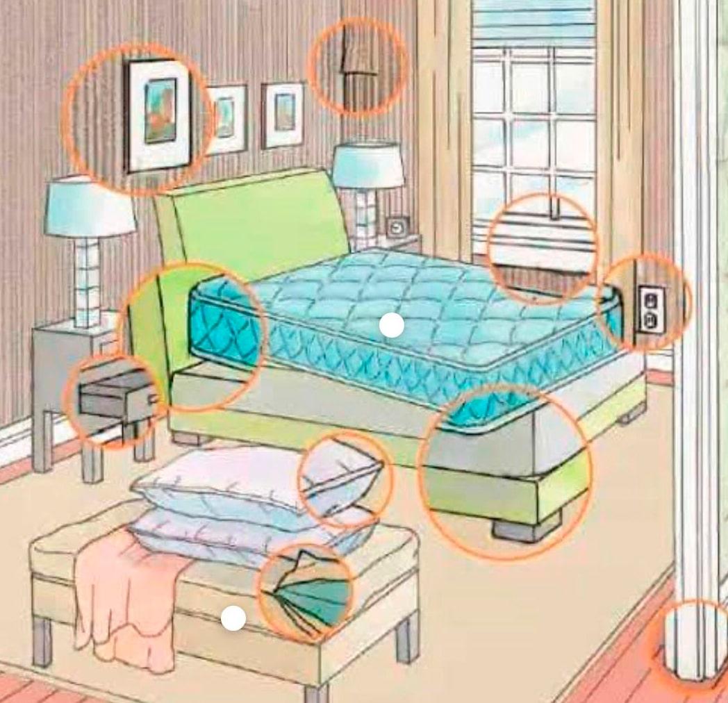 Onde os percevejos de cama se escondem?