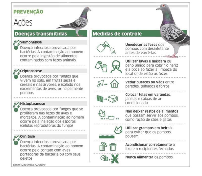 Prevenção de Pombos