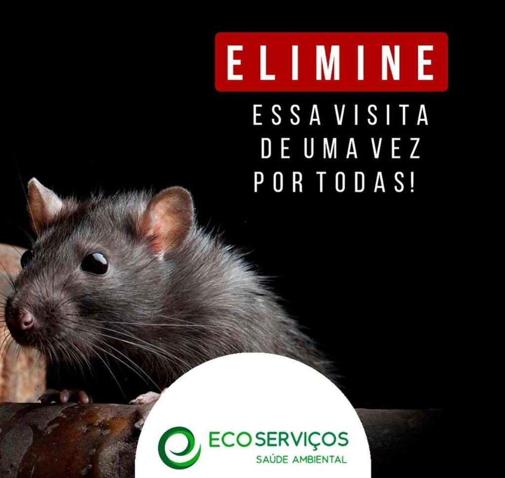 Desratização EcoServiços